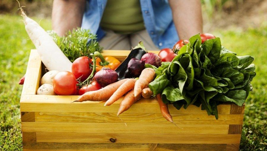 R$ 500 milhões são liberados para compra de produtos da agricultura familiar